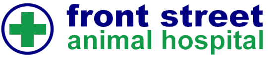 Front Street Animal Hospital