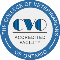 college of veterinarians